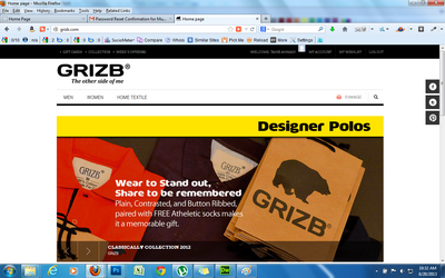 web-development-project-grizb